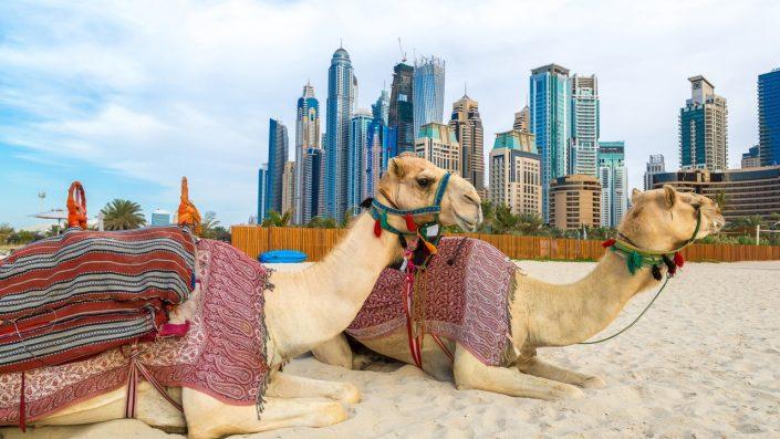 UAE 5