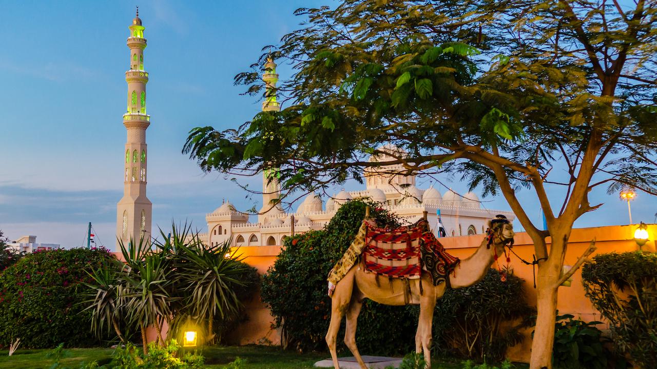Seara Hurghada Egipt