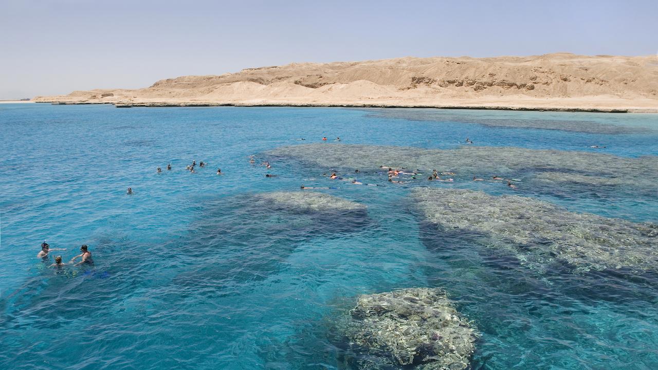 Snorkeling Hurghada Egipt