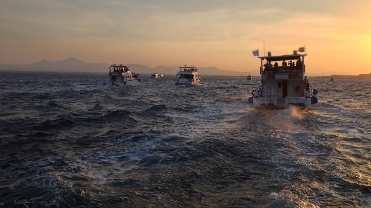 Croaziera pe Marea Rosie Iordania