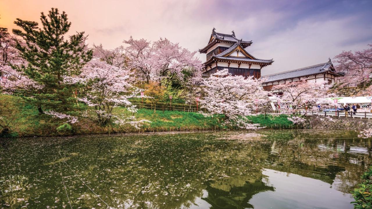 Tokyo JP