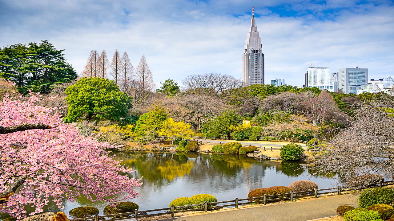 Tokyo grădină