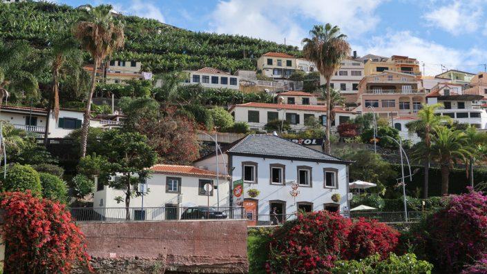 Madeira Festivalul Florilor Madeira Sejur 2020