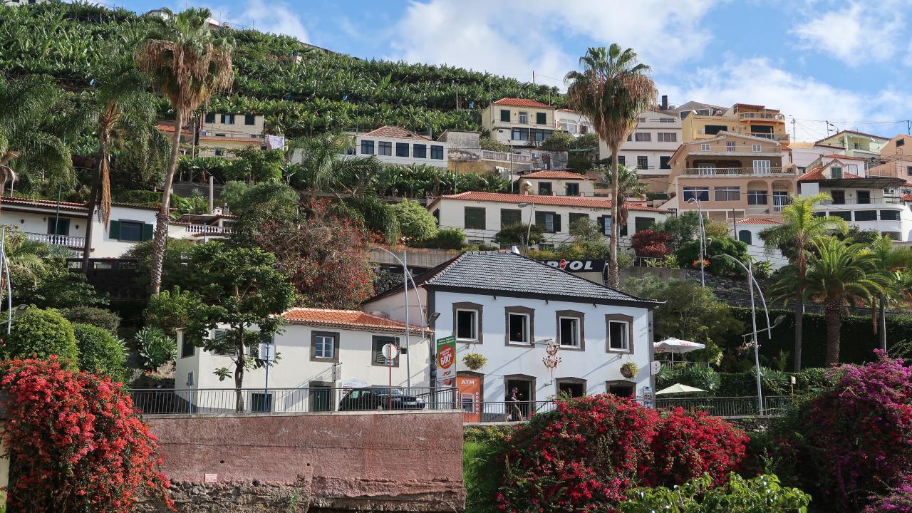 Madeira Festivalul Florilor