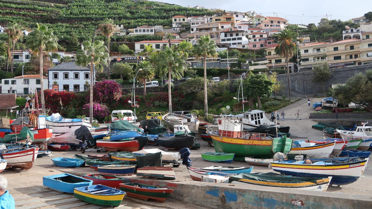 Funchal bărci