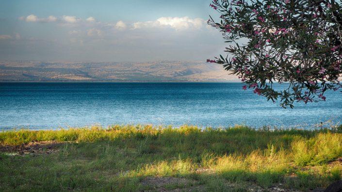 Marea Galileei