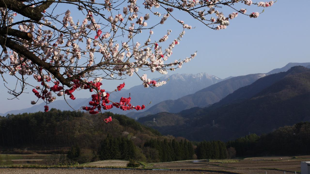 Muntele Komagatake Japonia