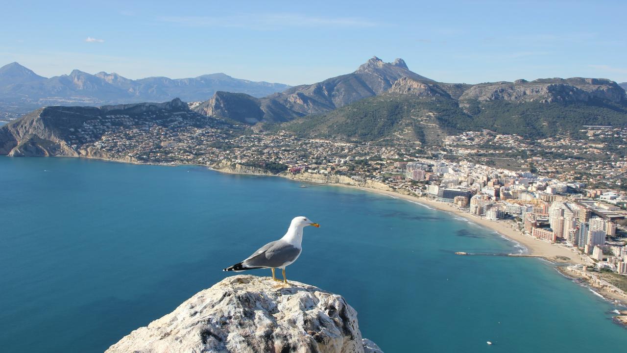 Alicante Costa Blanca 1