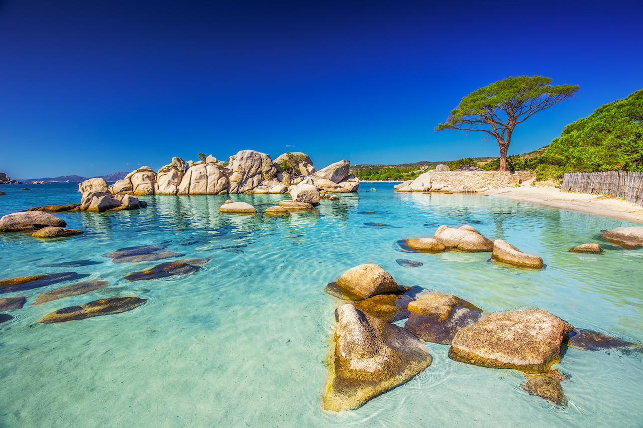 Fotolia: Palombaggia in Corsica